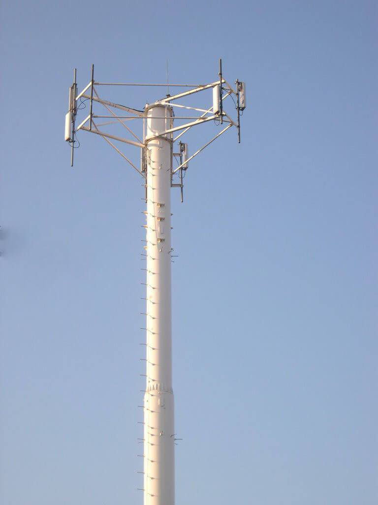 You are currently viewing Monopoles, Standard Monopoles
